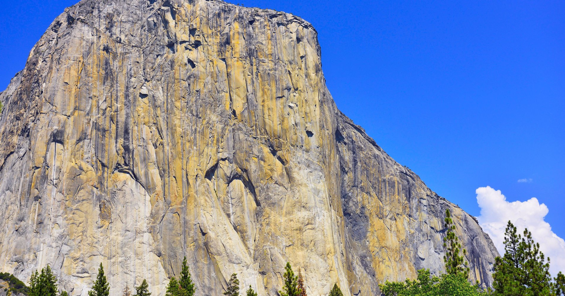 two climbers killed in fall from yosemite's el capitan - stock sector