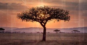 xblockchain-africa-social-300x158.jpg.pagespeed.ic._nB3iz8lnA.jpg
