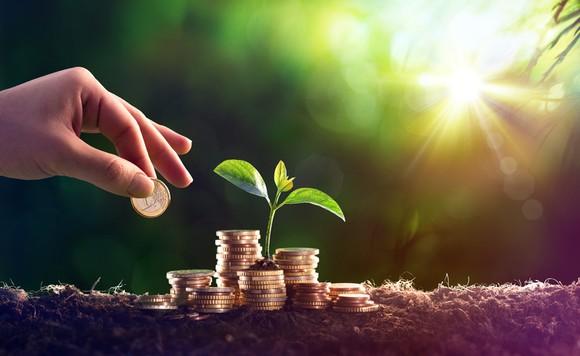 273-plants-growth-stock_large.jpg